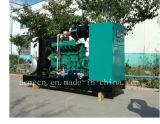 Тепловозные типы Syngas Biogas природного газа комплекта генератора электричества