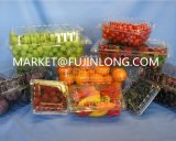 Maquinaria plástica automática para a bandeja/recipiente/parte superior do alimento