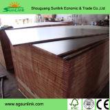 Tarjetas impermeables de Formply de la madera contrachapada del encofrado