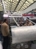 Máquina de embalagem plástica automática popular de alta velocidade da bolha do servo motor