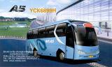 中間のサイズバス-魅了(A5連続)