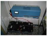 Professionele 110V/220V 1000W aan de Omschakelaar van de ZonneMacht 6000W voor het Zonnestelsel van het Huis