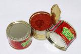 La pâte de tomate en conserve (TM-01)