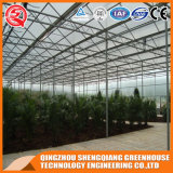 상업적인 다중 Span 정원 Toughened Glass Greenhouse 또는 Vegetable