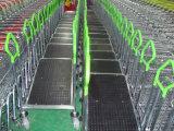 Efectivo de la cubierta de la plataforma del almacén solo - y - llevar la carretilla