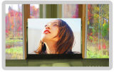 Indoor Full Color Led Display (P7.62)