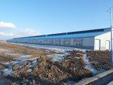 Oficina pré-fabricada da construção de aço (SSW-430)