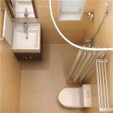 Bul di vendita caldo 1416 baccelli della stanza da bagno di SMC