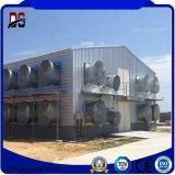 La granja diaria fabricada de la estructura de acero vertió para la parrilla del pollo