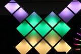 アドレス指定可能なLED照明灯のクリスマスの照明RGB LEDの軽いクリスマスの装飾LEDのパネルのクリスマスの装飾5年の保証ピクセル