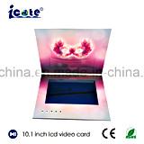 Papierfertigkeit-Videokarte mit dem 10.1 Zoll-Bildschirm