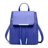 Vrije tijd de Zak van de Totalisator van de Vrouwen van de Zak van Dame Travel Backpack Bag Double Schouder