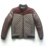 Nuevo Diseño de Moda Invierno chaqueta acolchada para el hombre