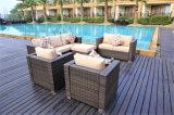 新しいモデルの庭の柳細工のソファーの屋外の藤のテラスの家具(GN-9114S)