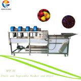 Nuevos productos de las frutas y hortalizas lavadora y secadora