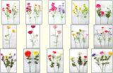 L'imitation des fleurs