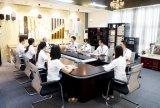 15W 8 Ohm-Sitzungs-Lautsprecher mit schwarzem weißem Farben-Konferenzredner