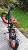 바닷가 함 250W 포도 수확 뚱뚱한 Pedelec/E 뚱뚱한 타이어 Bicycle/500W 전기 Retro 뚱뚱한 눈 Bike/E 지방 Bicycle/E 모래 Bike/750W 전기 자전거 26X4 타이어, En14176