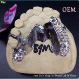 أسنانيّة قابل للنقل قالب جبس هيكل يجعل في [مينغو] مختبرة أسنانيّة