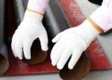 Chemise de fils de Tc en bonneterie transparente de la sécurité des gants de travail