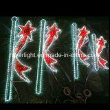 ポーランド人は公共の通りの装飾のためのLEDのクリスマスの照明を取付けた