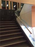 Лестница Tempered стекла самомоднейшей конструкции