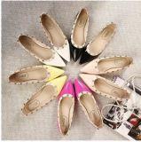 Le cuir verni peu profond aigu en gros de bouche rivette le plat avec les chaussures neuves plates