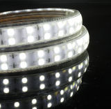 120LEDs/M AC110V/120V 5050防水LED Ribben