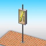 De openlucht Reclame van het Aanplakbord van Fram Enige Pool Lightbox van het Staal van de Pijler