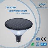 Il giardino illumina solare alimentato con la batteria di litio di alta qualità