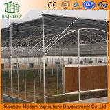 Verdampfungskühlung-Auflage-Wasser-Kühlvorrichtung-Auflage-Preis für Geflügelfarm