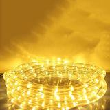 Température de couleur spéciale Matériel PVC Flex de la corde de lumière à LED