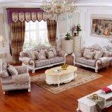Sofà del salone nel colore selettivo dei sofà per mobilia domestica (990)