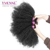 Estensione crespa dei capelli ricci dei capelli umani di estensione dei capelli di modo di Yvonne di Afro brasiliano del tessuto
