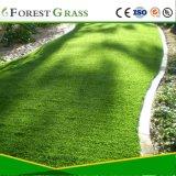 Use para relvados de relva artificial para a paisagem (VS)
