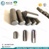 карбид вольфрама износ компонентов для Hpgr
