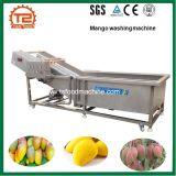 과일 씻기에 사용되는 세탁기 기계로 오존 세탁기