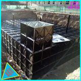 De ondergrondse Tank van de Opslag van het Water Bdf met Ss en Ondergedompeld Gegalvaniseerd