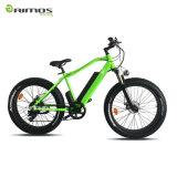 セリウム500W 750W 1000Wによって隠される電池大きい力の脂肪質のタイヤの電気バイク