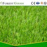 Nationales Patent-Bescheinigung-Produkt, im Freien gefälschtes Gras (CS)