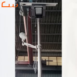 Batería de antirrobo en la parte superior de 30 vatios LED lámpara solar de la calle