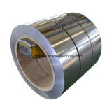 Bobinas de acero inoxidable de calidad Super304 Professional China Proveedor