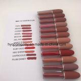 De hete het Verkopen Kleuren van MAC 12 van de Goede Kwaliteit maken Vloeibare Lippenstift waterdicht
