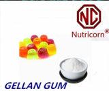 음식 급료 Gellan 실리콘껌 제조자
