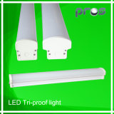 수증기 Tight LED Lighting Fixture, Parking Lot를 위한 LED Batten