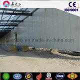 Structure en acier de construction de la logistique pour l'entrepôt