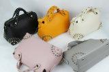 Handtasche, Shoulderbag, beiläufige Beutel-Entwürfe für Ansammlungen der Frauen