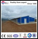 Structure en acier de la conception de délestage automatique des mangeoires et des buveurs de Volaille Poulet de matériel agricole chambre