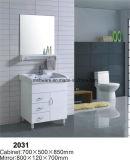 Module de salle de bains en céramique de PVC de bassin