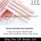 De Koreaanse Individuele Valse Wimpers van de Gloed, 60 Wimpers van het Etiket van de Wimpers van de Gloed van Bundels Zachte Zwarte Privé